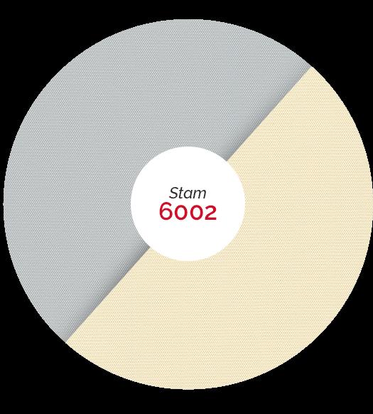 matières stam 6002